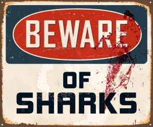 Shark caution sign but humans are killing sharks more