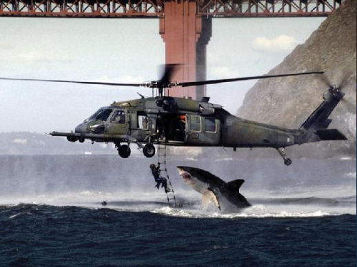 Shark about to attack military personnel hanging from a helicopter