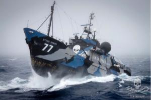 Sea Shepherd's 'Battle Ship'