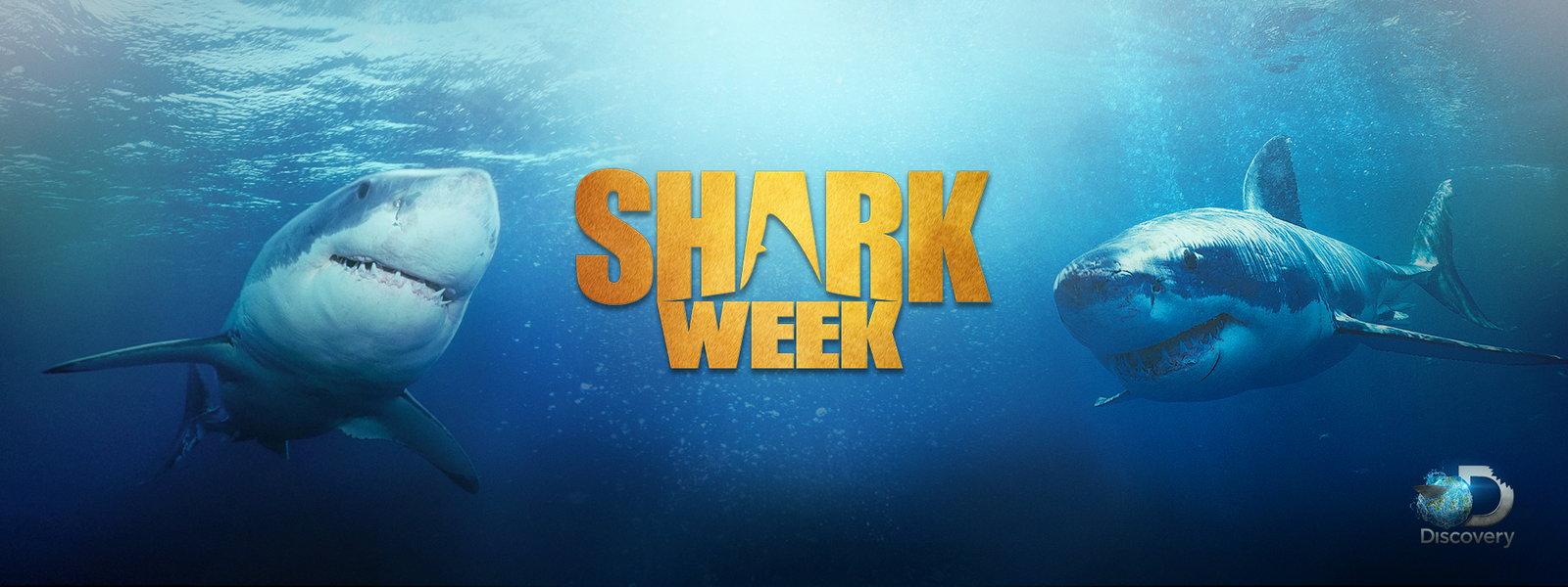 Shark Week Poster