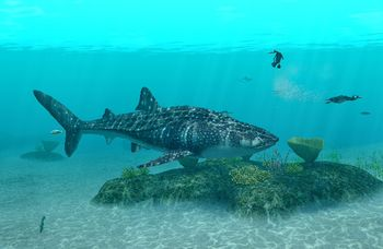 Endless Ocean Whale Shark: Sharks in video games